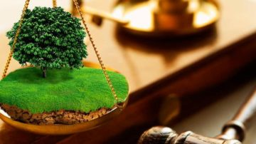 Земельно-правовые вопросы